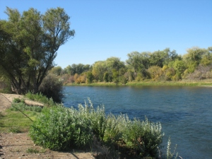 Sacramento River Durango